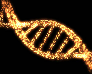 Image of a strand of DNA