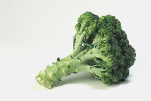 Broccoli component limits breast cancer stem cells, U-M study finds