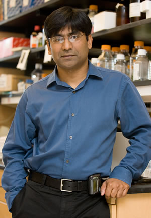 image of Pavan Reddy, M.D.