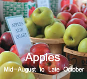 Apples:  mid-August to late October