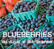 Blueberries: mid-August to mid-September