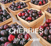 Cherries:  July to August