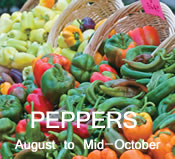 Peppers: mid-August to mid-October