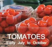 Tomatoes:  Early July to October